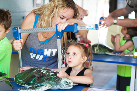 Loggerhead Marinelife Events on Jupiter Family Fun