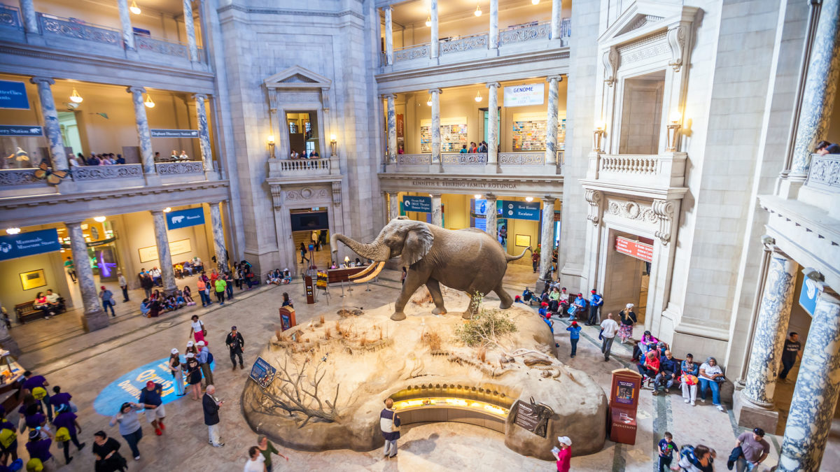 Museum Day provides opportunity for free tickets to many area museums
