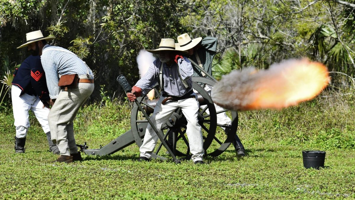 What to do this weekend in and around Jupiter including a battlefield re-enactment, a couple PNOs, a drumline and some stripey critters
